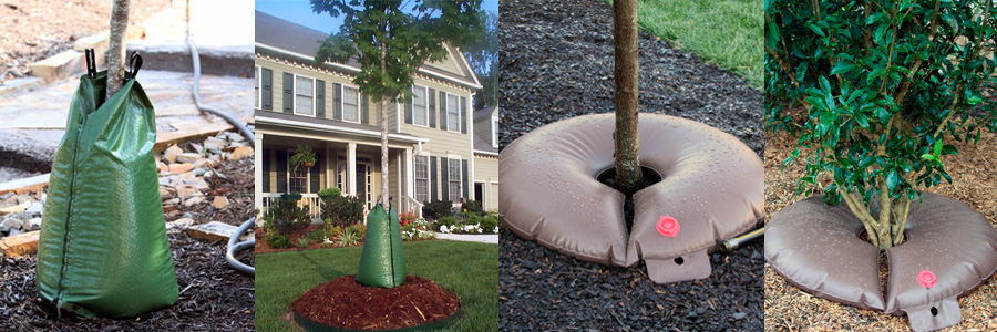 Treegator Slow Release Watering Bags for Trees and Shrubs